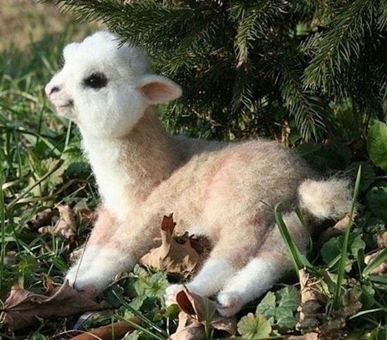 Suitsupply Alpaca Scarf Review: Alpaca Animals