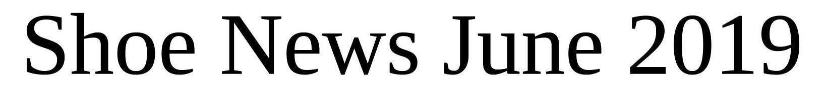 Shoe News June 2019 Misiu Academy