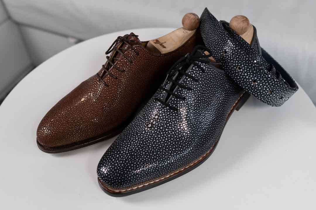 Brown and Grey Stingray Shoes